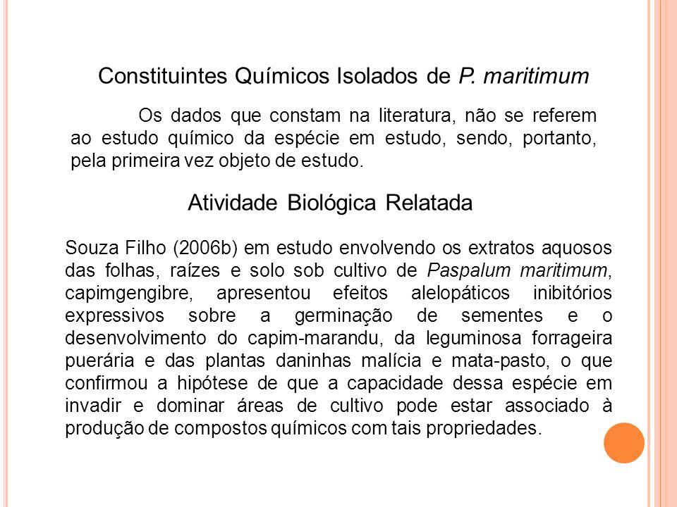 Constituintes Químicos Isolados de P. maritimum
