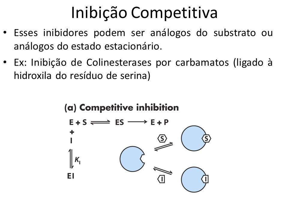 Inibição Competitiva Esses inibidores podem ser análogos do substrato ou análogos do estado estacionário.