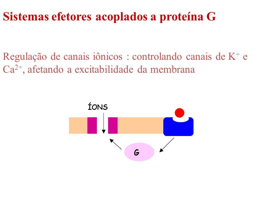 Sistemas efetores acoplados a proteína G