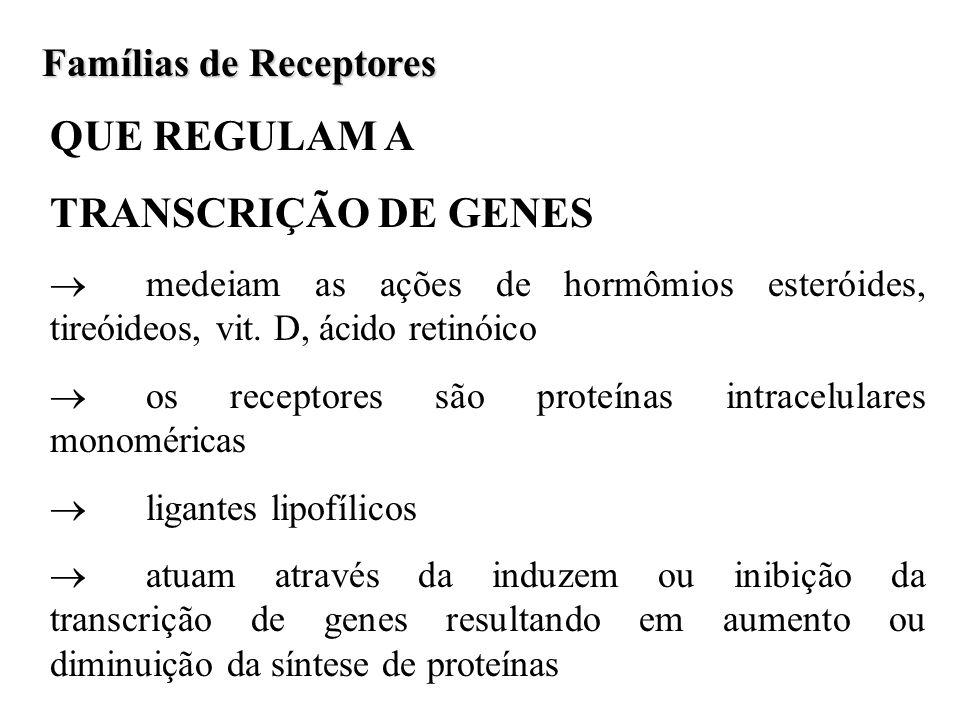 QUE REGULAM A TRANSCRIÇÃO DE GENES Famílias de Receptores