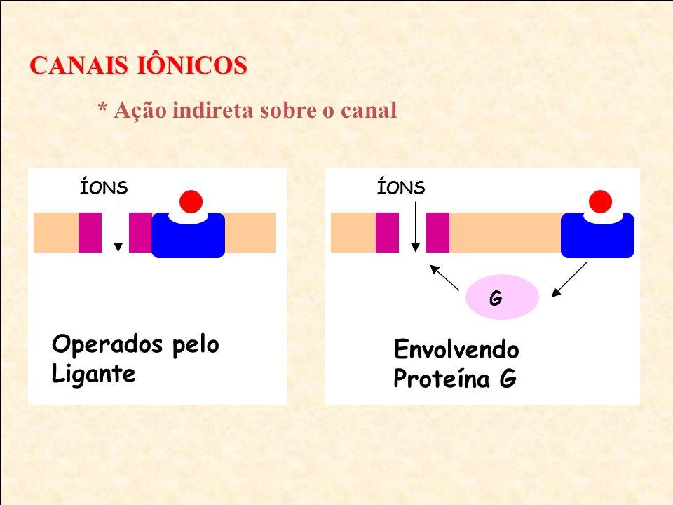 CANAIS IÔNICOS Operados pelo Ligante Envolvendo Proteína G G