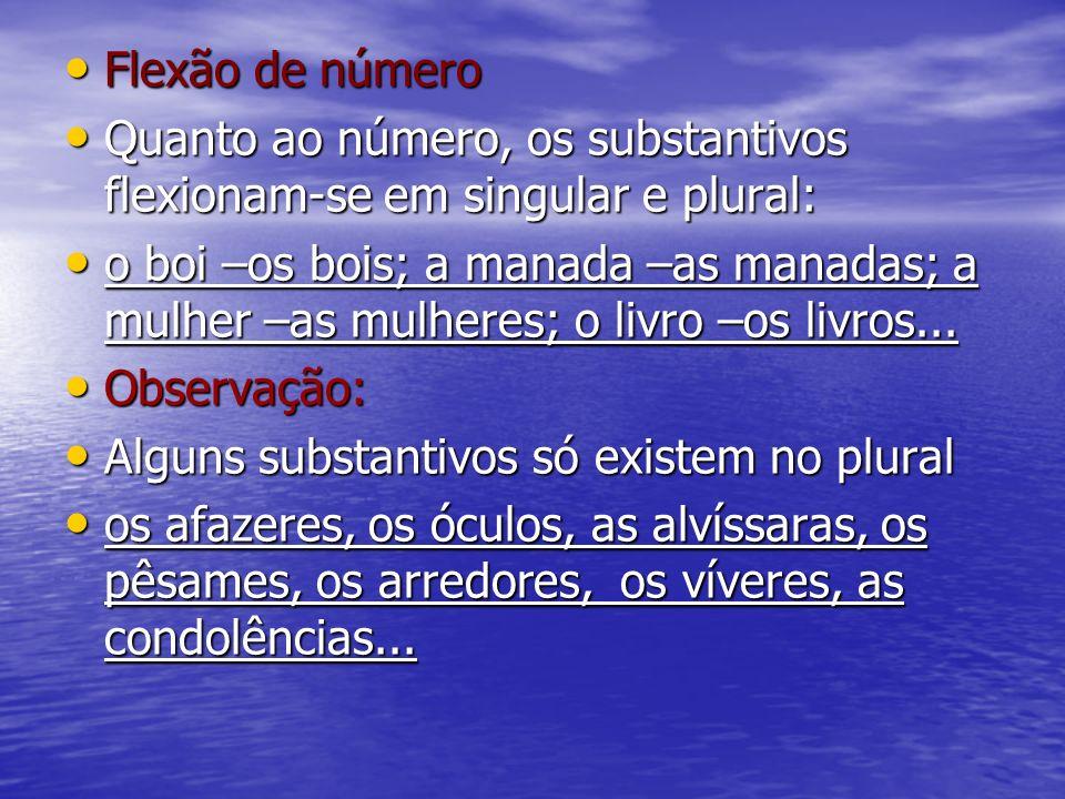 Flexão de númeroQuanto ao número, os substantivos flexionam-se em singular e plural: