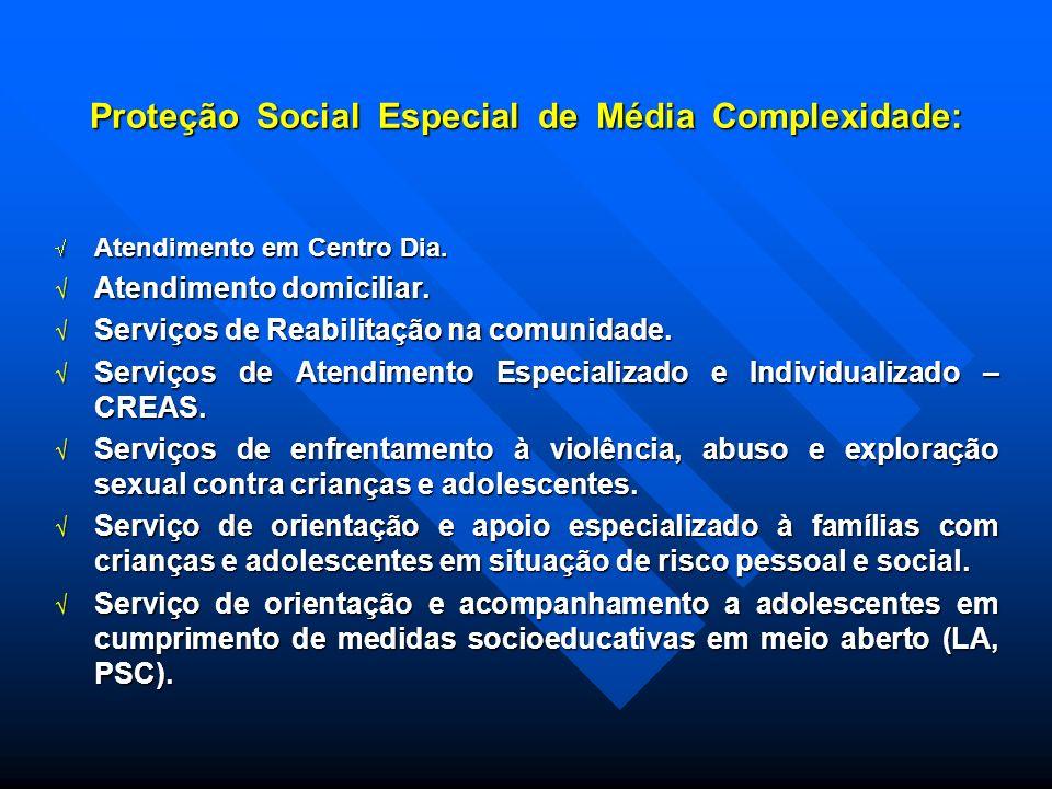 Proteção Social Especial de Média Complexidade: