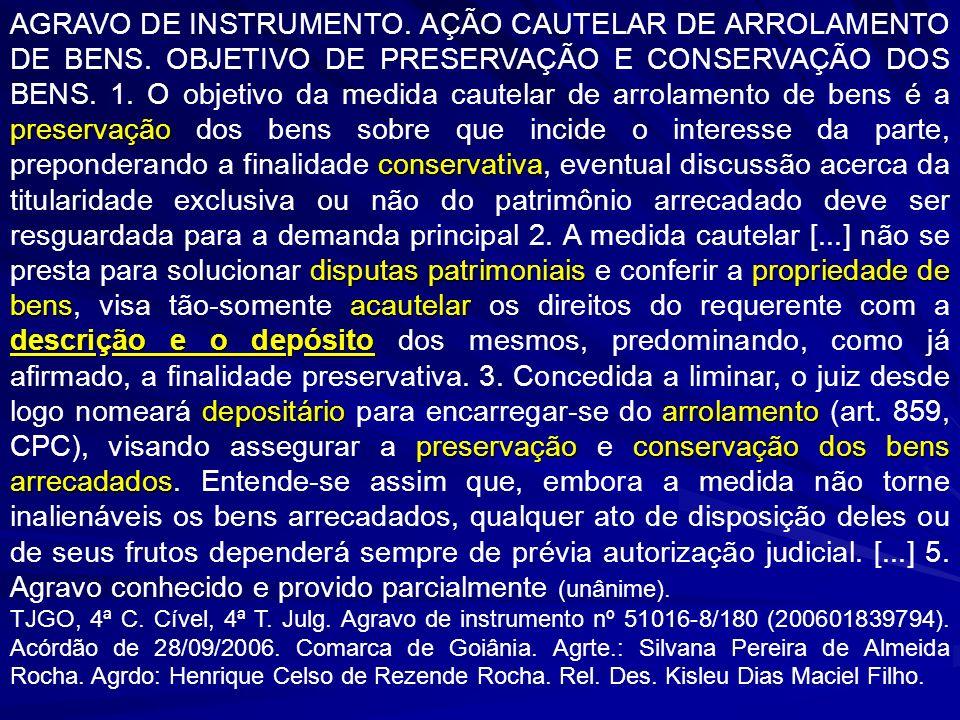 AGRAVO DE INSTRUMENTO. AÇÃO CAUTELAR DE ARROLAMENTO DE BENS