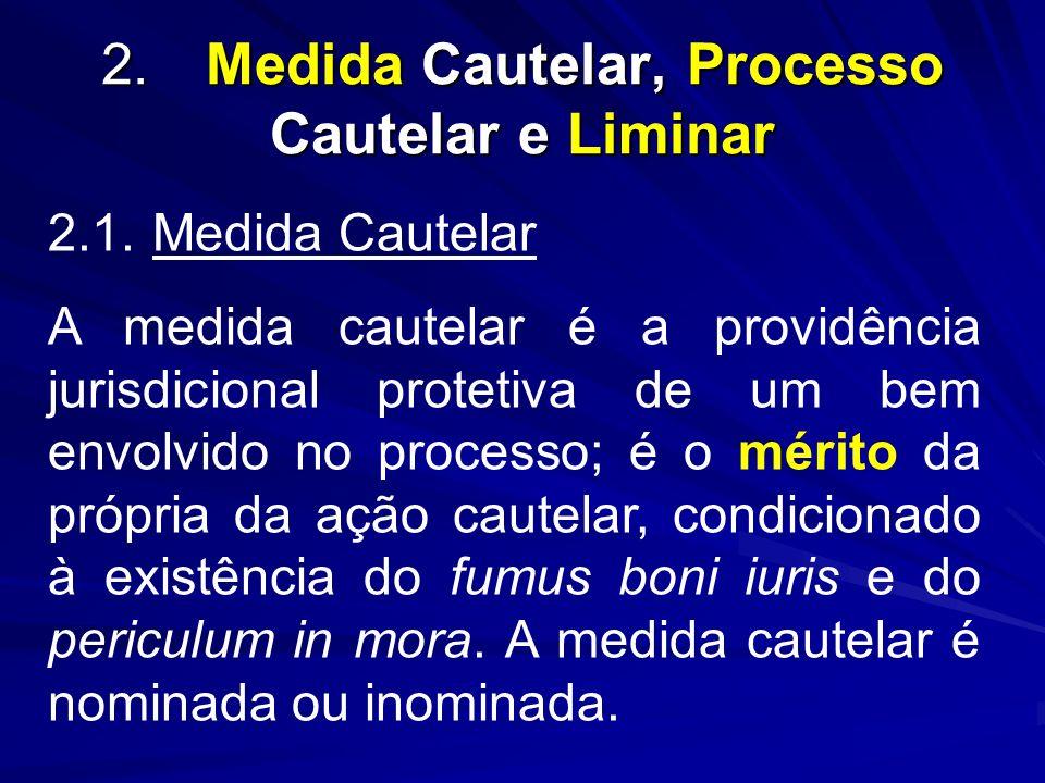 2. Medida Cautelar, Processo Cautelar e Liminar
