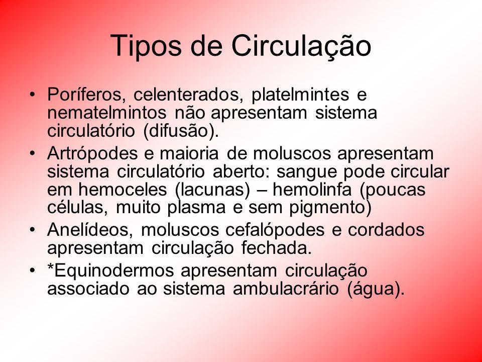 Tipos de Circulação Poríferos, celenterados, platelmintes e nematelmintos não apresentam sistema circulatório (difusão).