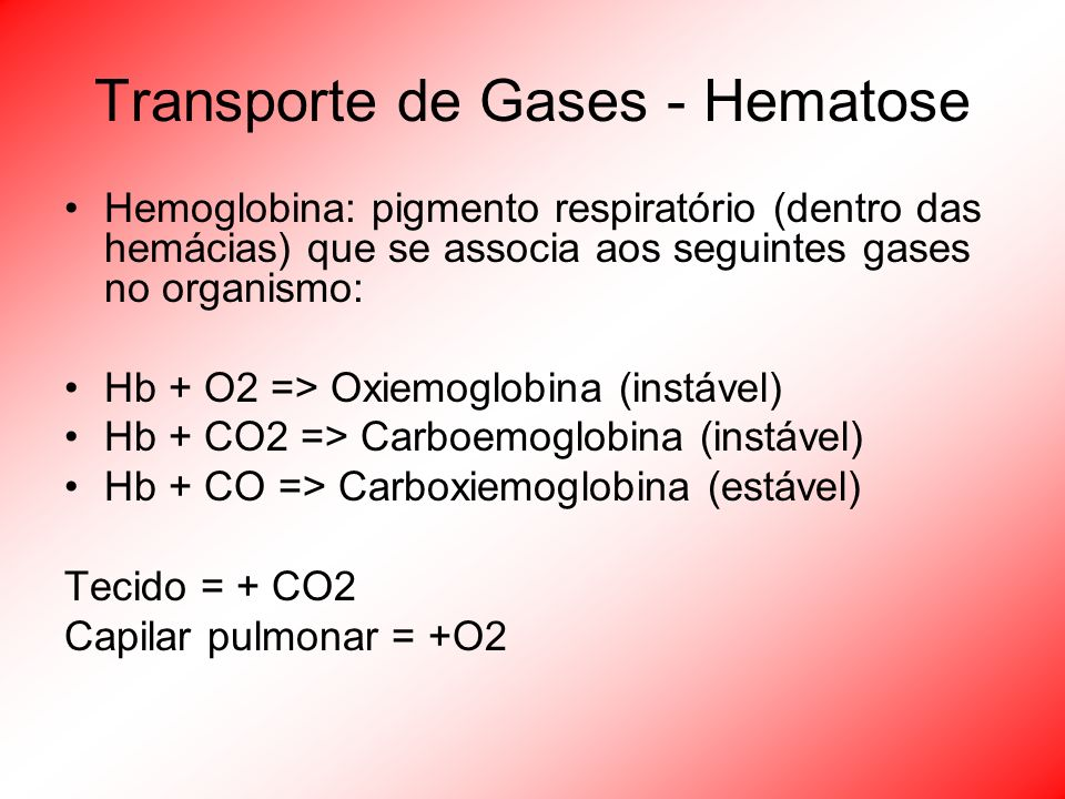 Transporte de Gases - Hematose