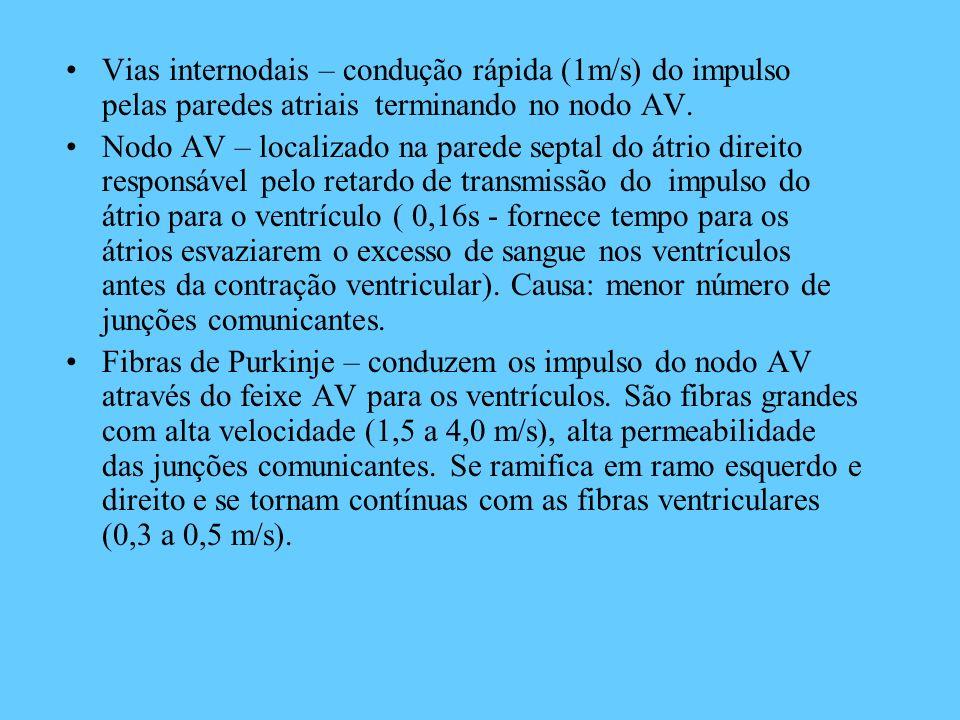 Vias internodais – condução rápida (1m/s) do impulso pelas paredes atriais terminando no nodo AV.