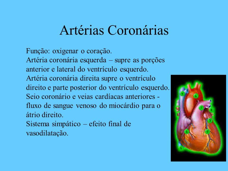 Artérias Coronárias Função: oxigenar o coração.