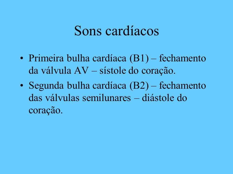 Sons cardíacos Primeira bulha cardíaca (B1) – fechamento da válvula AV – sístole do coração.