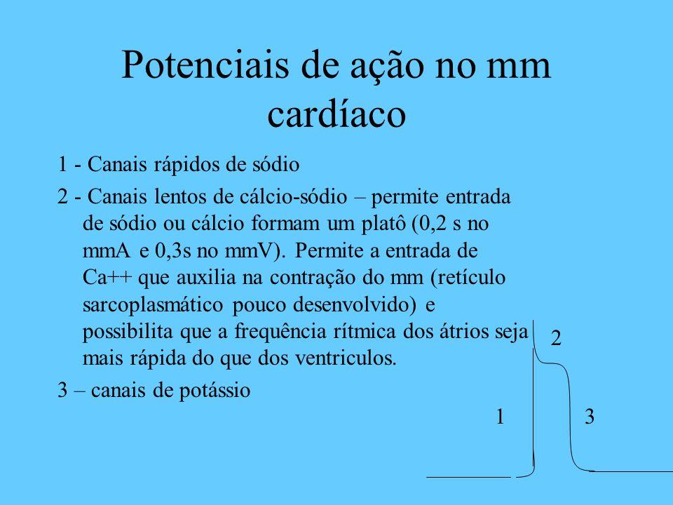 Potenciais de ação no mm cardíaco