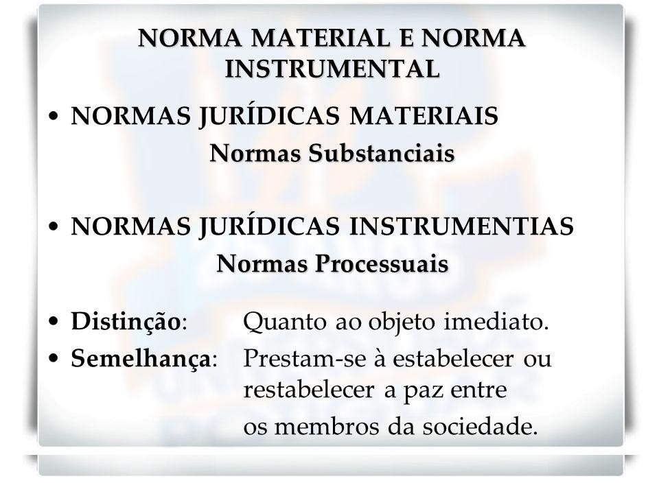 NORMA MATERIAL E NORMA INSTRUMENTAL