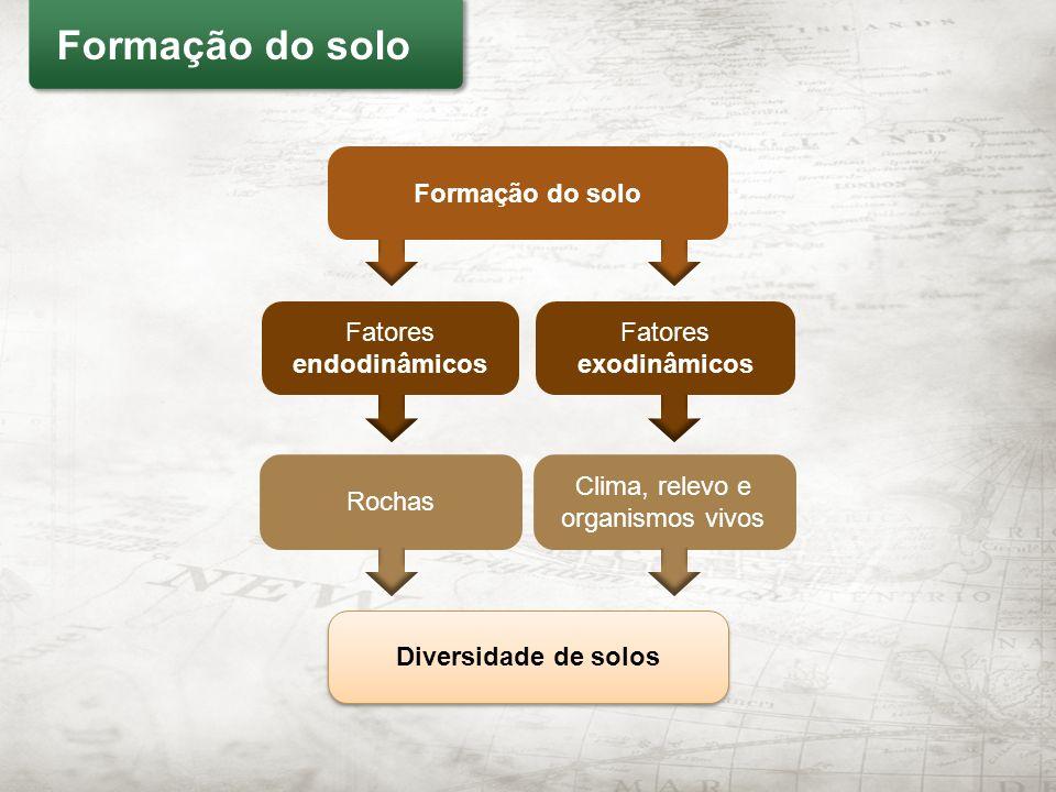 Formação do solo Formação do solo Fatores endodinâmicos Fatores