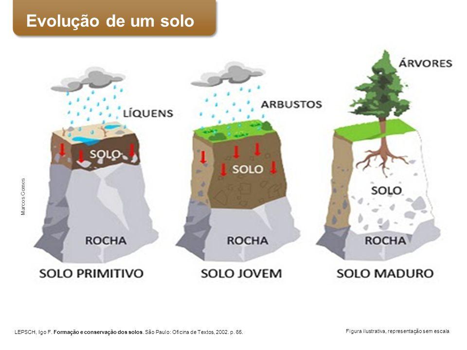 Evolução de um solo Perfil do solo Marcos Gomes