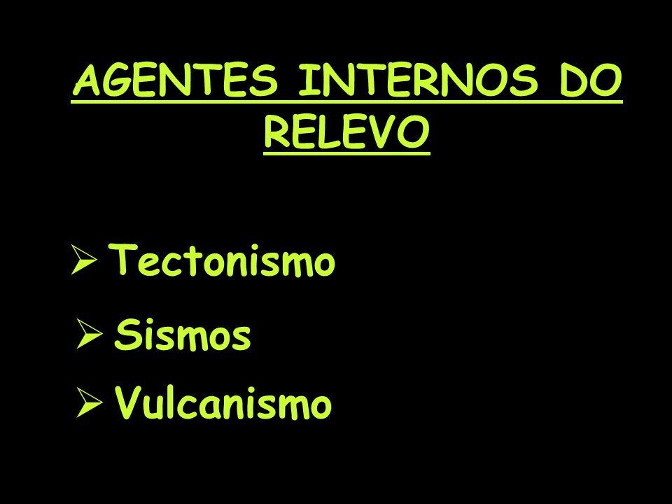 AGENTES INTERNOS DO RELEVO