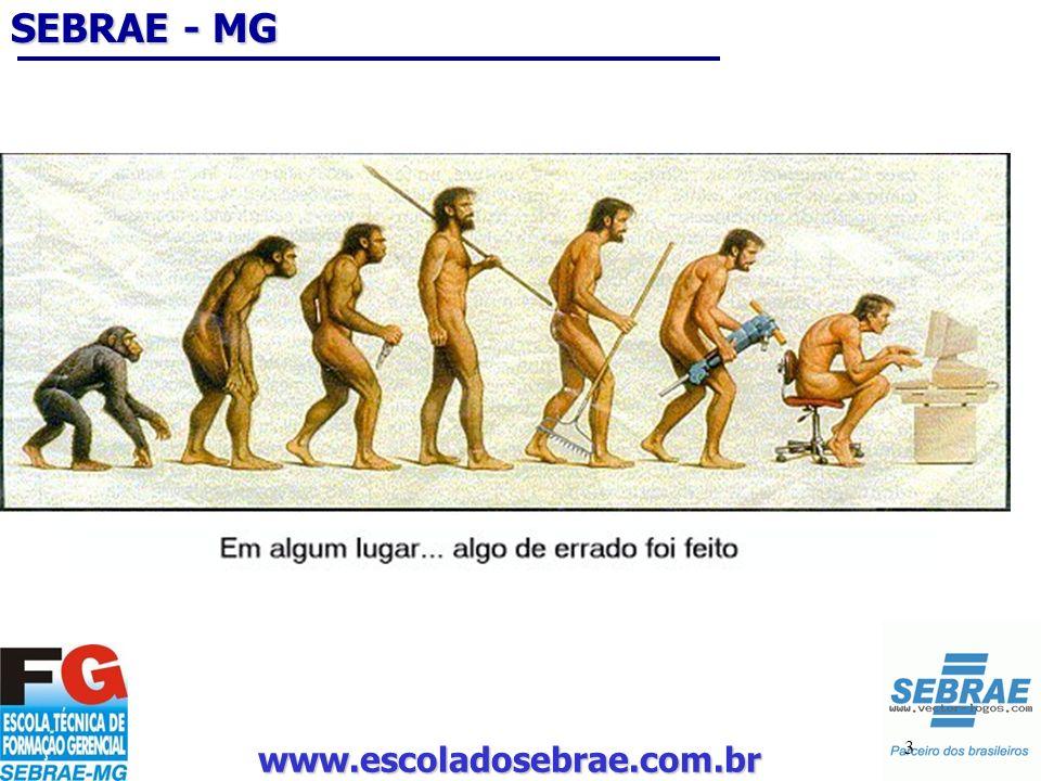 SEBRAE - MG