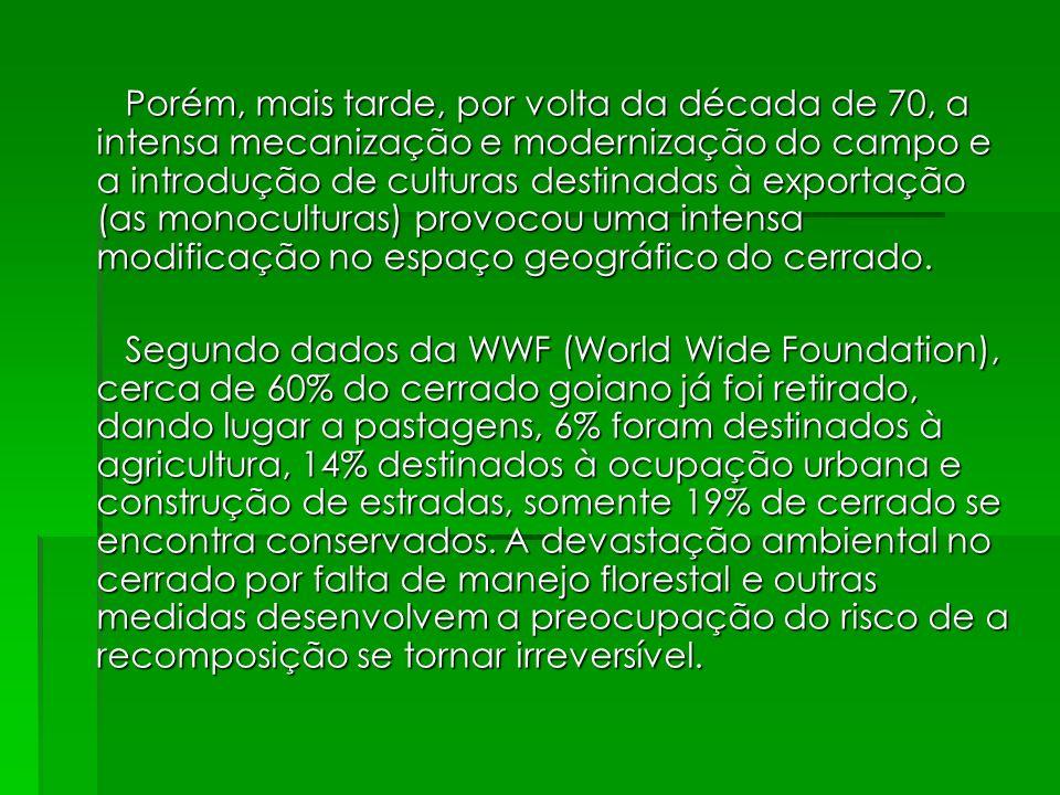 Porém, mais tarde, por volta da década de 70, a intensa mecanização e modernização do campo e a introdução de culturas destinadas à exportação (as monoculturas) provocou uma intensa modificação no espaço geográfico do cerrado.