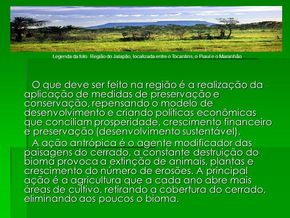 Legenda da foto: Região do Jalapão, localizada entre o Tocantins, o Piauí e o Maranhão