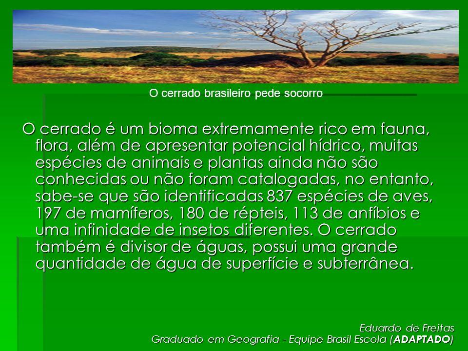 O cerrado brasileiro pede socorro