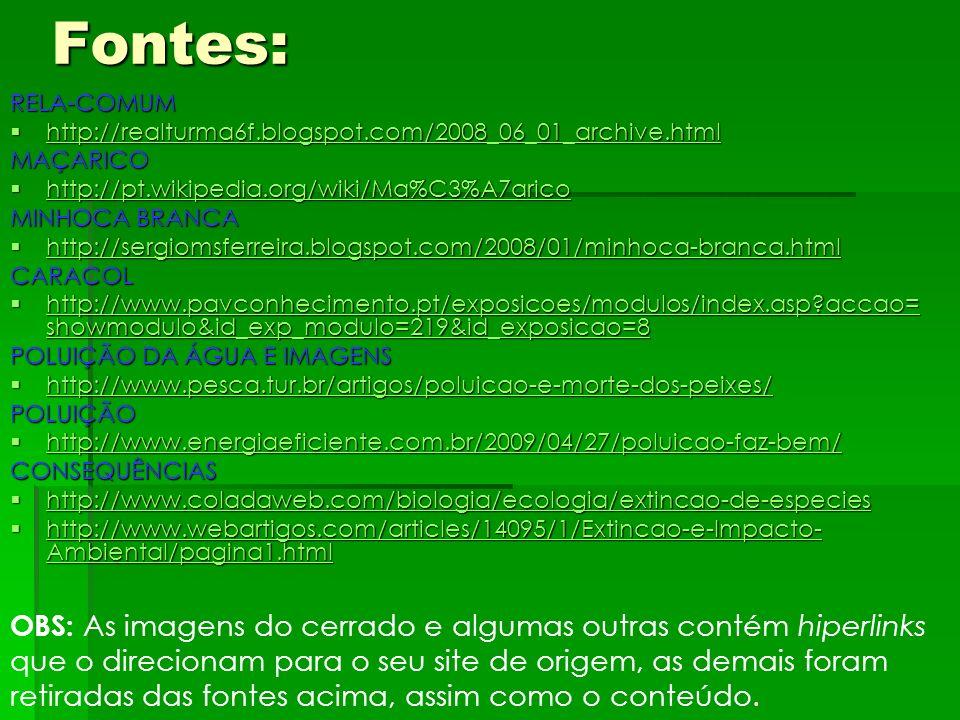 Fontes: RELA-COMUM. http://realturma6f.blogspot.com/2008_06_01_archive.html. MAÇARICO. http://pt.wikipedia.org/wiki/Ma%C3%A7arico.