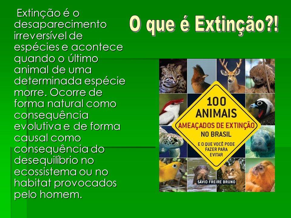 Extinção é o desaparecimento irreversível de espécies e acontece quando o último animal de uma determinada espécie morre. Ocorre de forma natural como consequência evolutiva e de forma causal como consequência do desequilíbrio no ecossistema ou no habitat provocados pelo homem.