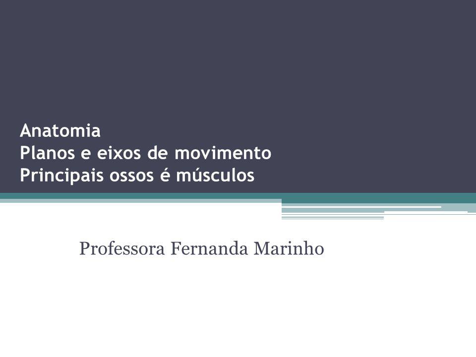 Anatomia Planos e eixos de movimento Principais ossos é músculos