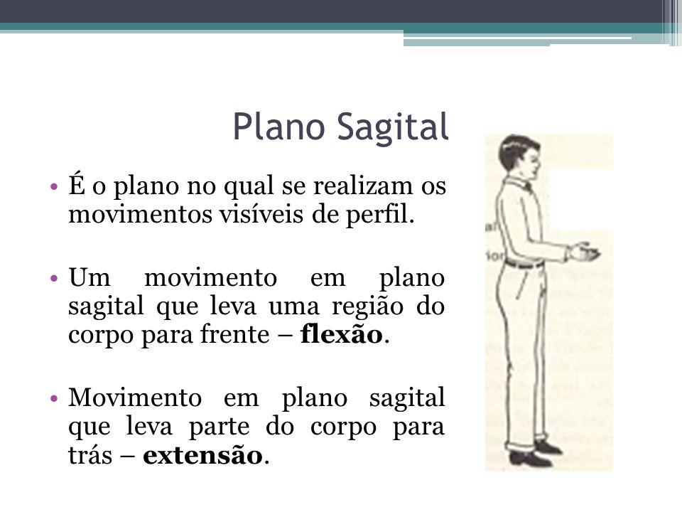 Plano SagitalÉ o plano no qual se realizam os movimentos visíveis de perfil.