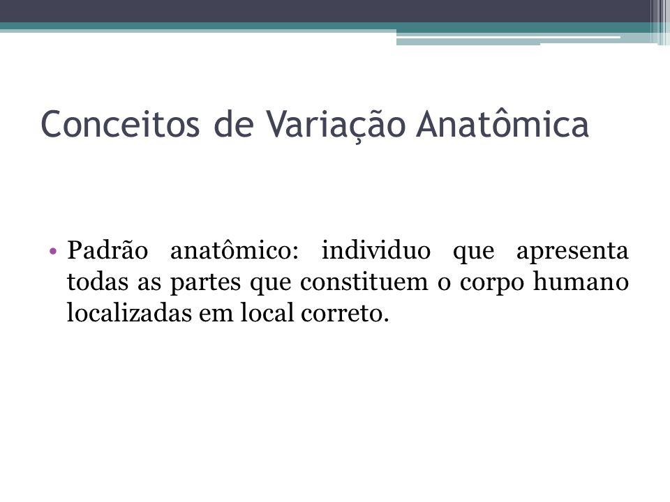 Conceitos de Variação Anatômica