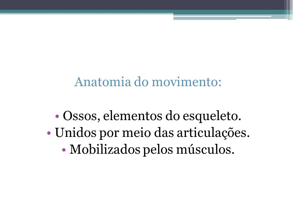 Anatomia do movimento: Ossos, elementos do esqueleto.