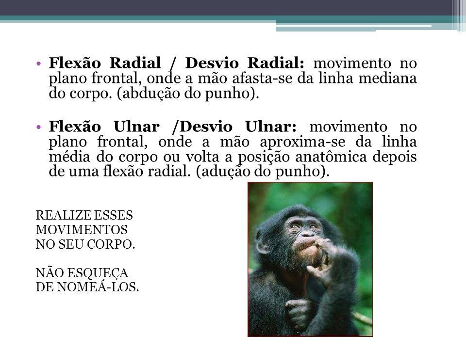 Flexão Radial / Desvio Radial: movimento no plano frontal, onde a mão afasta-se da linha mediana do corpo. (abdução do punho).