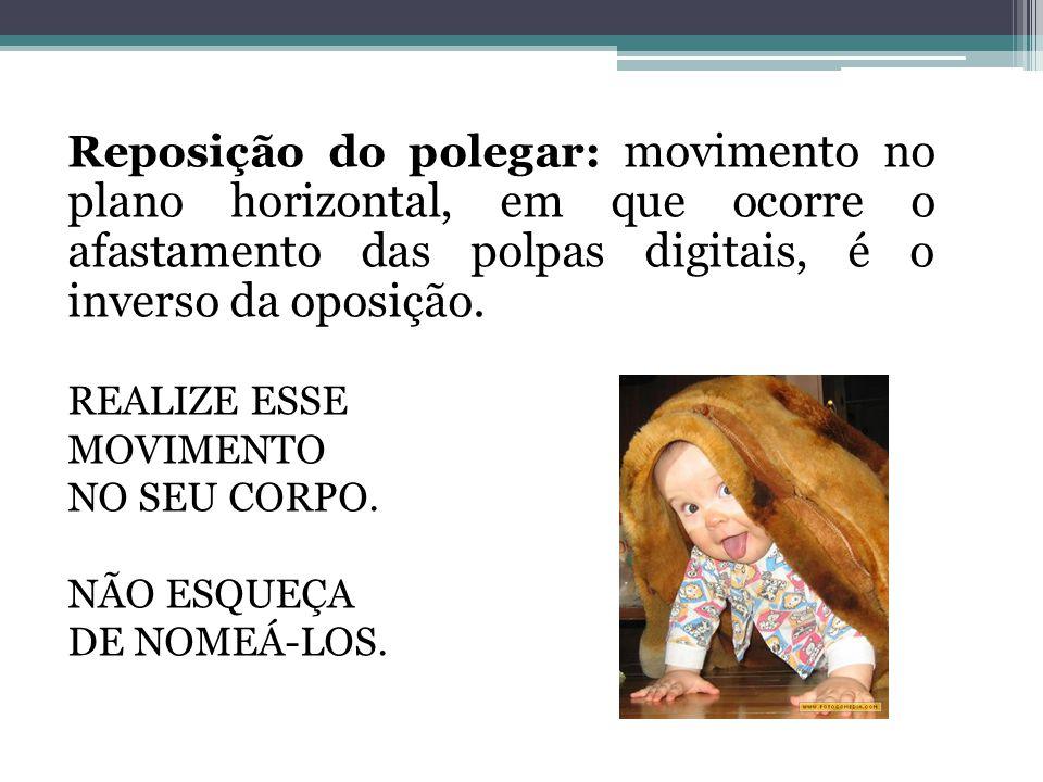 Reposição do polegar: movimento no plano horizontal, em que ocorre o afastamento das polpas digitais, é o inverso da oposição.