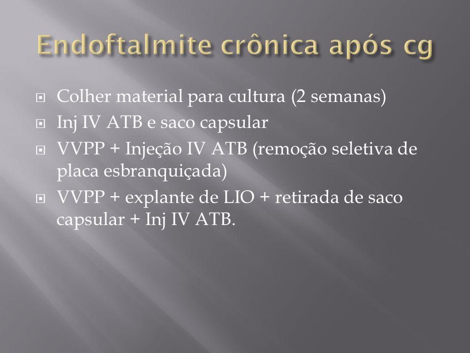 Endoftalmite crônica após cg