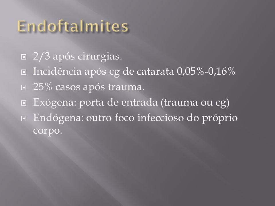 Endoftalmites 2/3 após cirurgias.