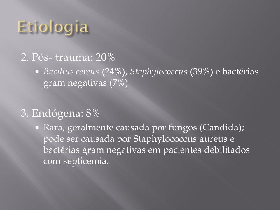 Etiologia 2. Pós- trauma: 20% 3. Endógena: 8%