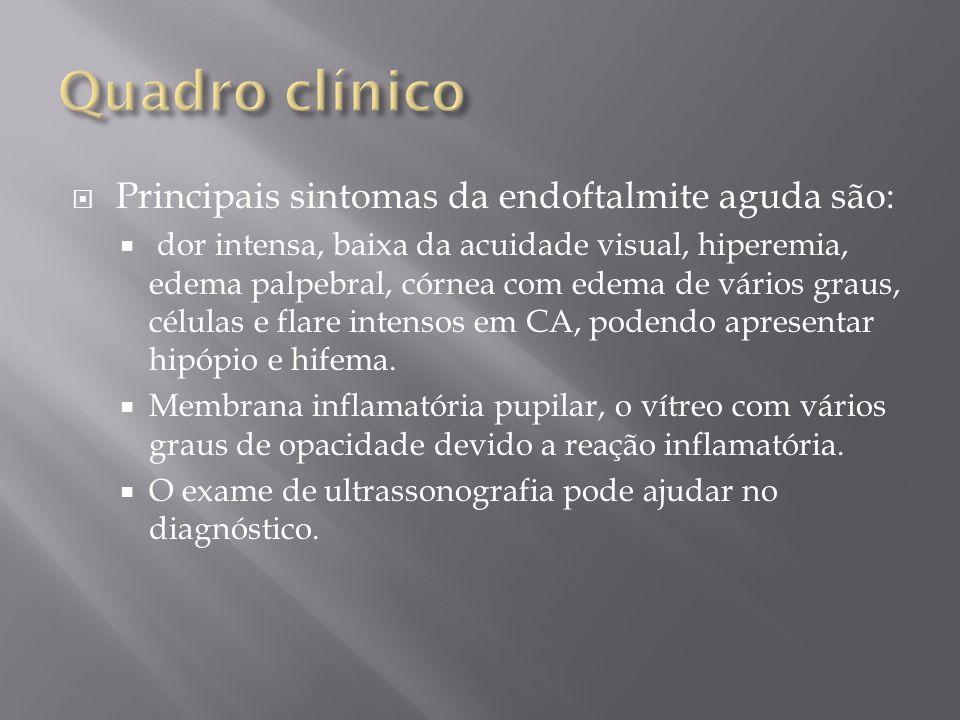 Quadro clínico Principais sintomas da endoftalmite aguda são: