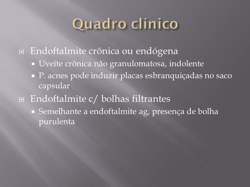 Quadro clínico Endoftalmite crônica ou endógena