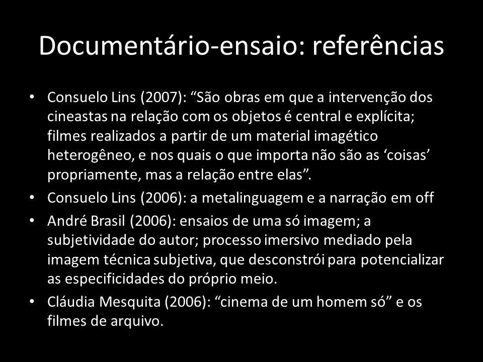 Documentário-ensaio: referências