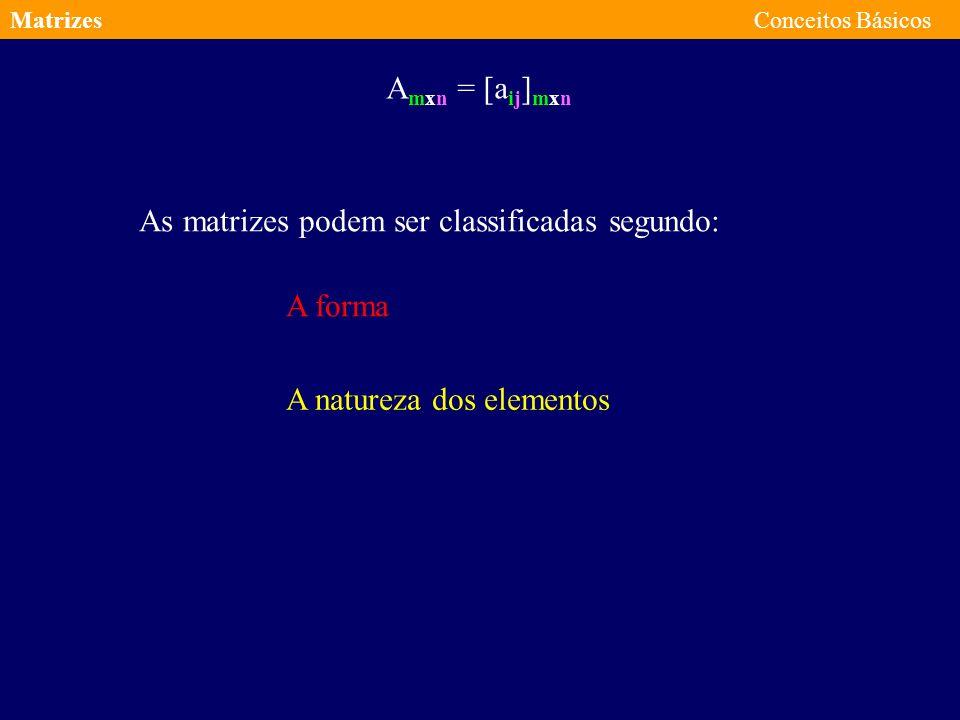 As matrizes podem ser classificadas segundo: