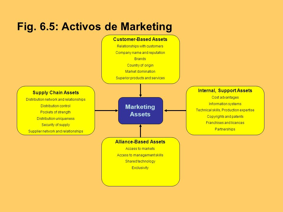 Fig. 6.5: Activos de Marketing