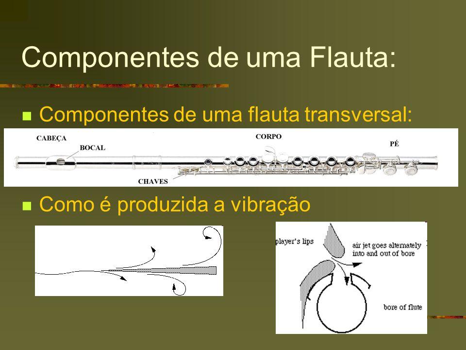 Componentes de uma Flauta: