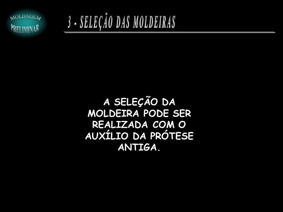 3 - SELEÇÃO DAS MOLDEIRAS