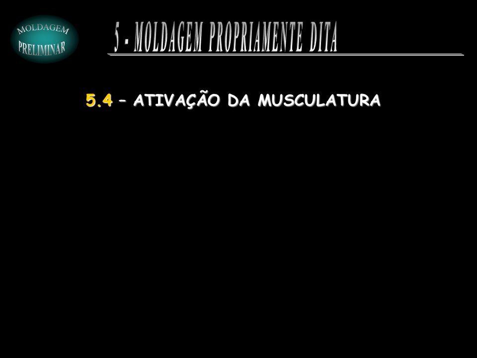 5 - MOLDAGEM PROPRIAMENTE DITA