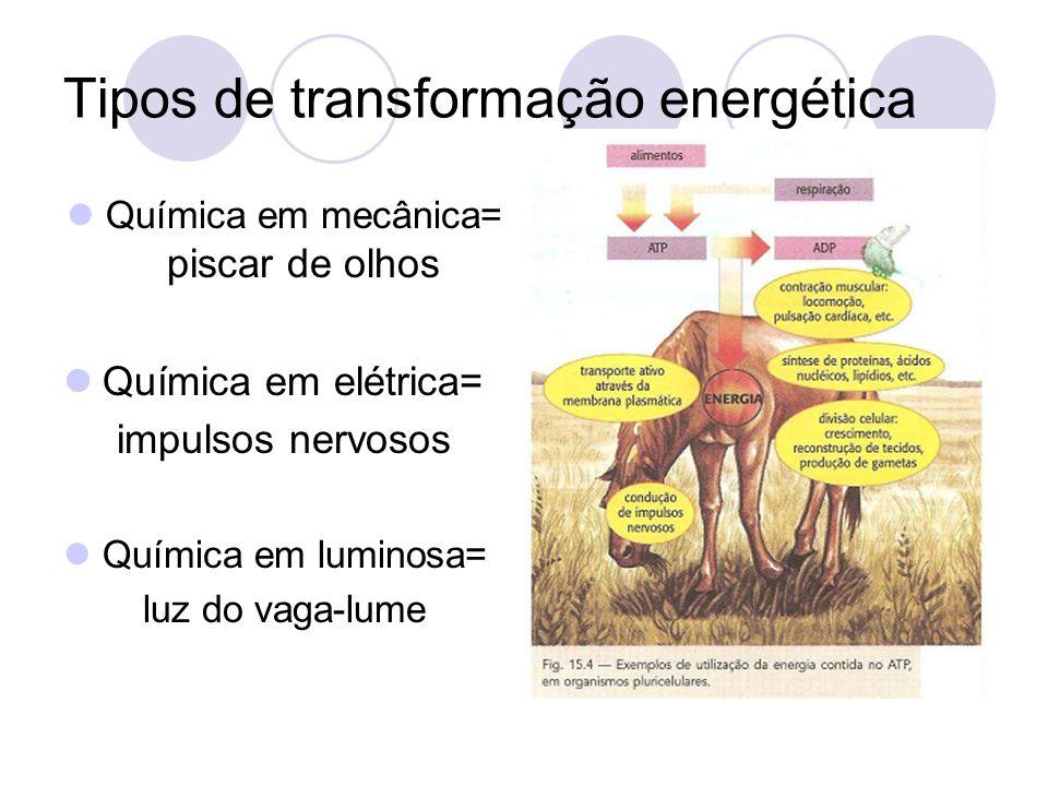 Tipos de transformação energética