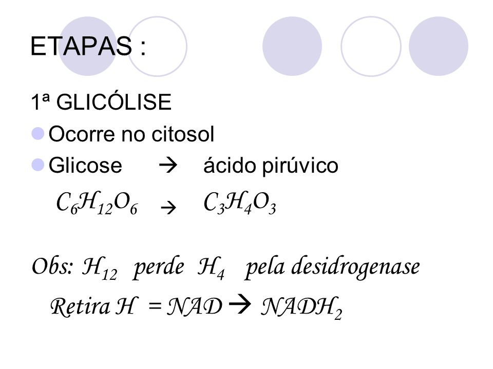 Obs: H12 perde H4 pela desidrogenase Retira H = NAD  NADH2