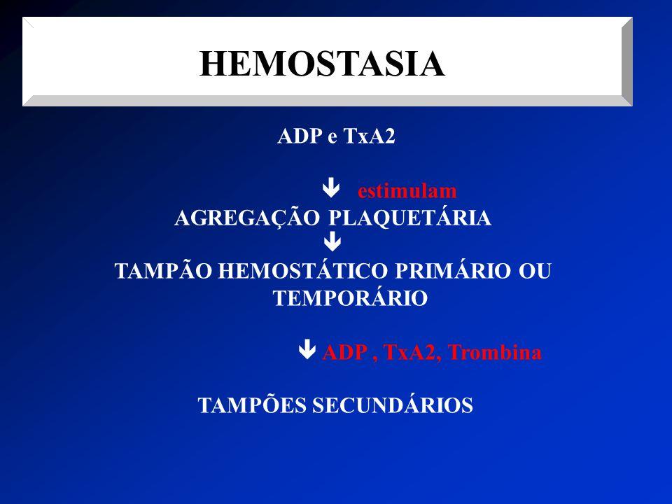 AGREGAÇÃO PLAQUETÁRIA TAMPÃO HEMOSTÁTICO PRIMÁRIO OU TEMPORÁRIO
