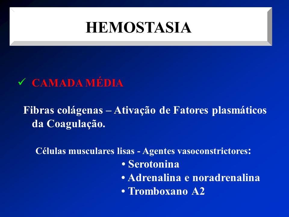 Células musculares lisas - Agentes vasoconstrictores: • Serotonina