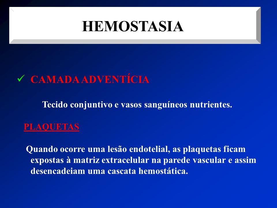 HEMOSTASIA CAMADA ADVENTÍCIA