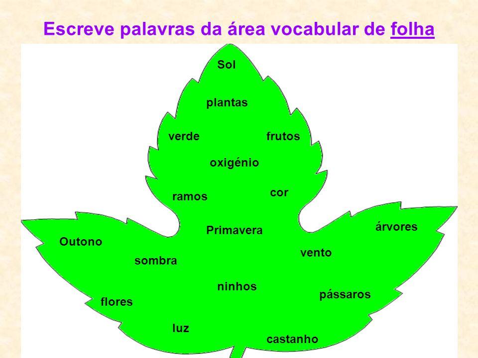 Escreve palavras da área vocabular de folha