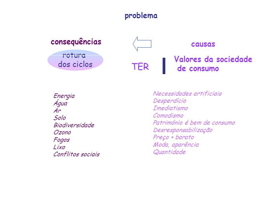 TER problema consequências causas rotura dos ciclos