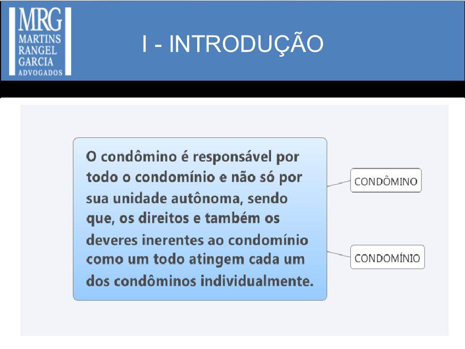 I - INTRODUÇÃO
